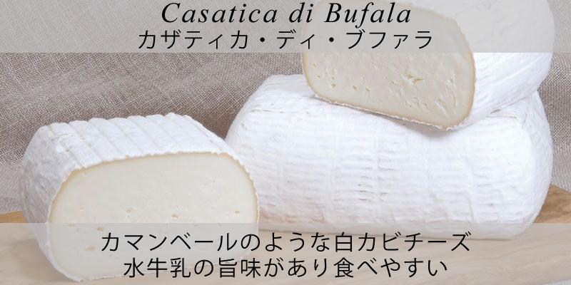 ピアッティ カザティカ・ディ・ブファラ