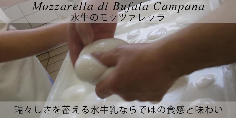 ピアッティ 水牛のモッツァレッラ